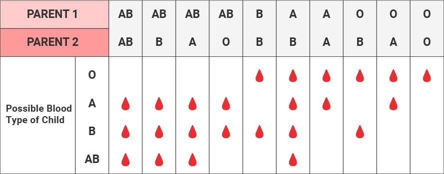 blood type dating matches