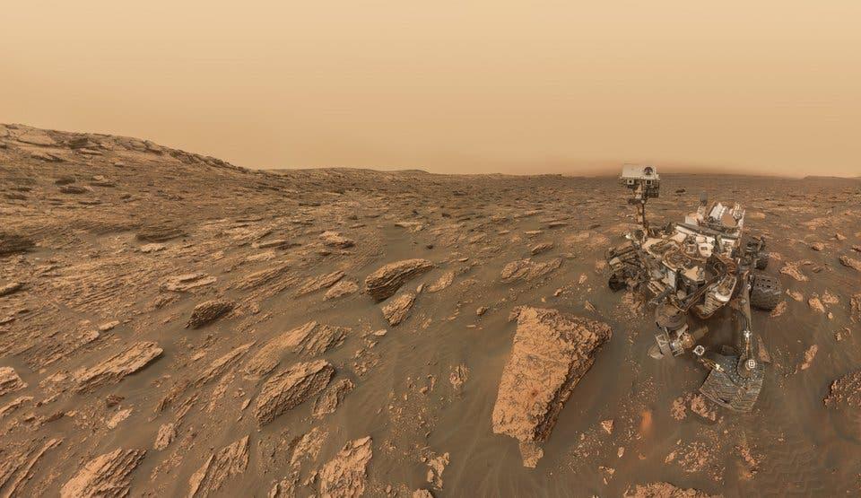 Curiosity selfie.