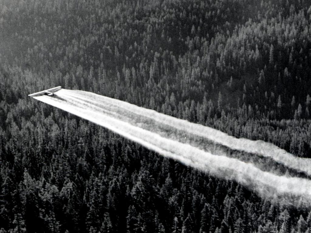 An airplane spraying DDT over Baker County, Oregon as part of a spruce budworm control project, 1955. Credit: Wikimedia Commons.