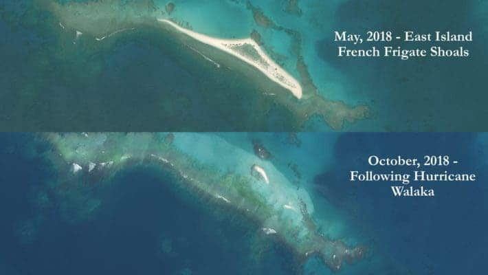 Frighting satellite imagery of East Island site before and after the hurricane hit. Credit: Chip Fletcher.