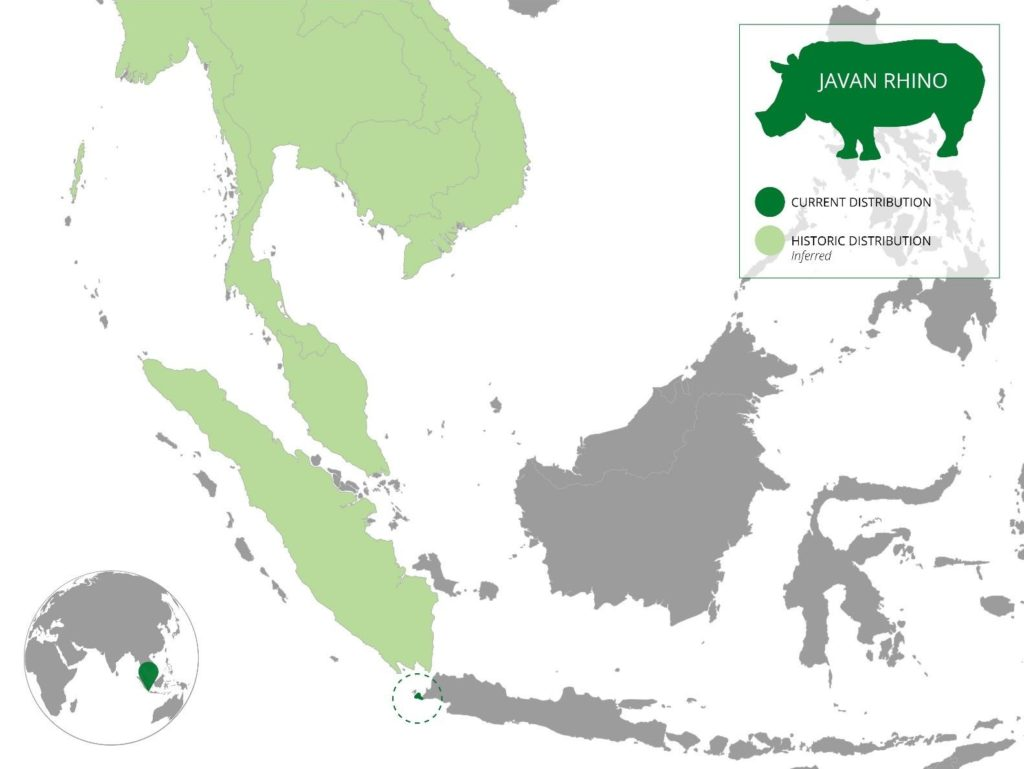 Population distribution of the Javan Rhino. Credit: WWF.