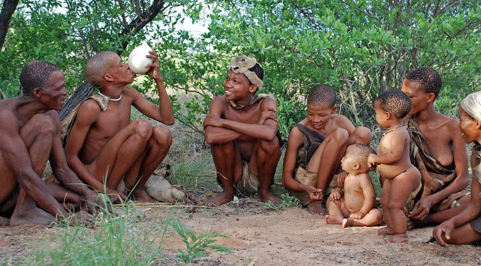 Bushman group.