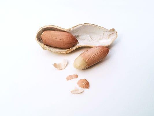 Peanut.