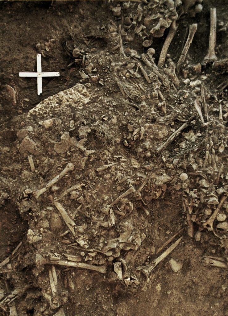 Photo showing the remains of a 20-year old woman from around 4,900 years ago, who was killed by the first plague pandemic. Credit: Karl-Göran Sjögren.