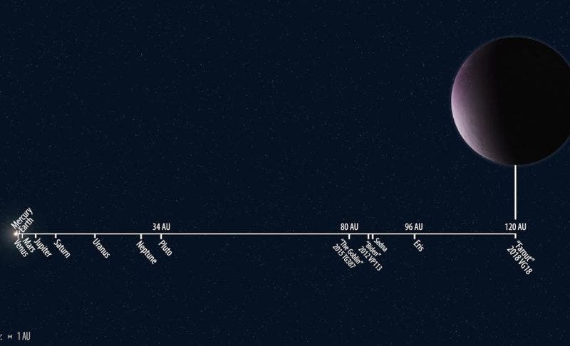 The distance of 2018 VG18 from the sun compared to other known Solar System objects. Credit: Roberto Molar Candanosa/Scott S. Sheppard/Carnegie Institution for Science.