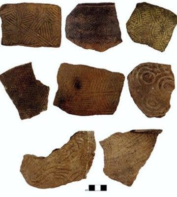Pottery fragments.