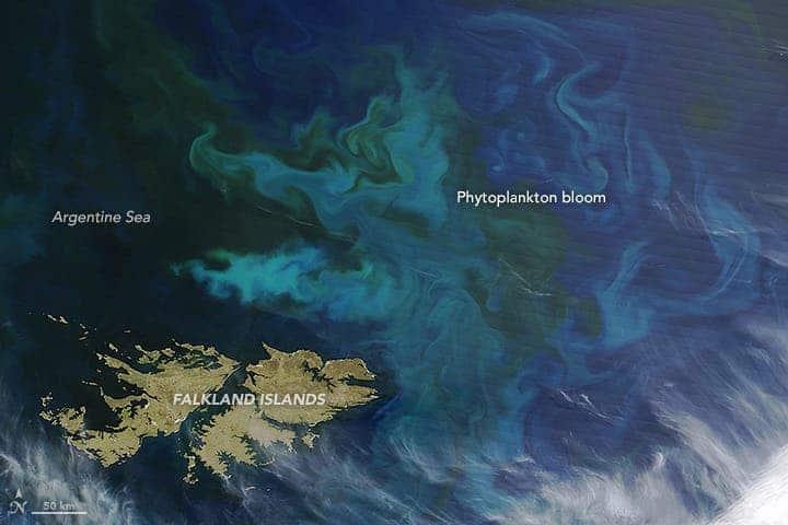 Falkland Islands phytoplankton bloom.