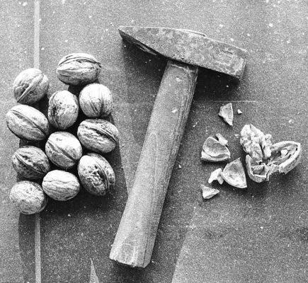 Nut hammer.