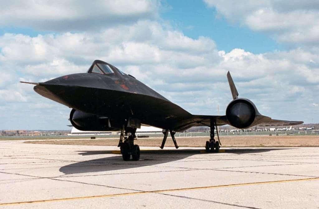 Blackbird profile.