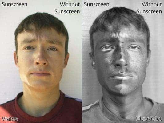 Before and after sunscreen, as seen by UV camera, demonstrating its protective effects. Image: Wikimedia Commons.