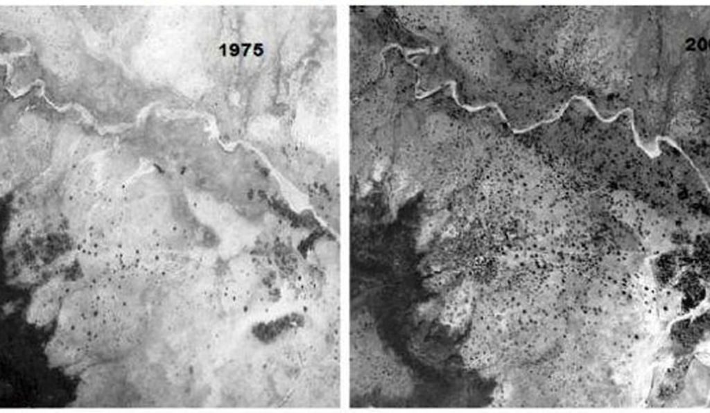 Aerial photos showing the same surroundings around Galma, a town in Niger. Left: 1975, Right: 2003 after reforestation. Credit: USGS.