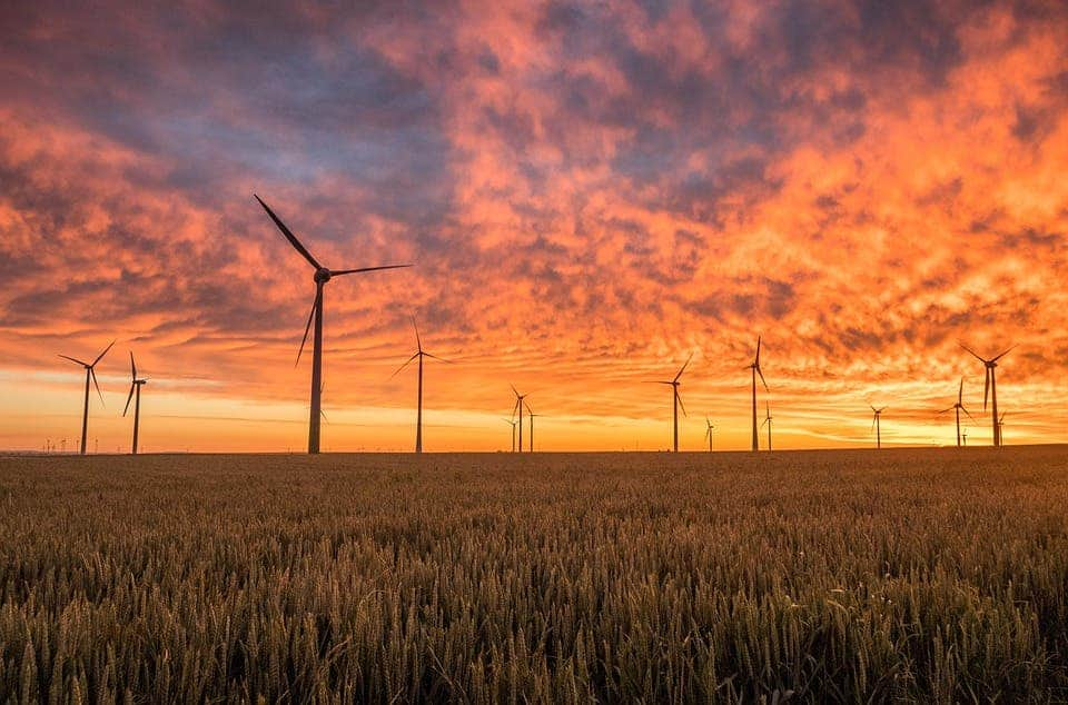 Renewables accounted for third of global power capacity in 2018, says Irena