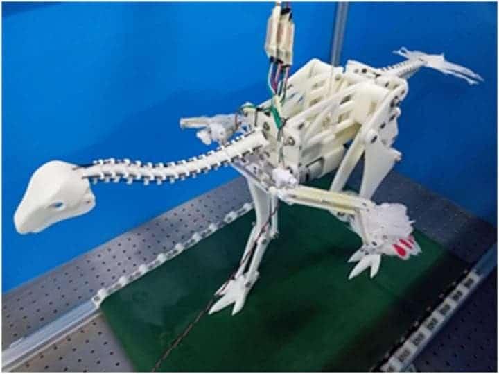 Caudipteryx robot.