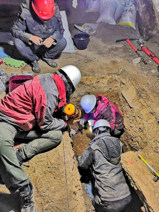 Researchers excavating the Baishiya Karst Cave. Credit: Dongju Zhang, Lanzhou University.