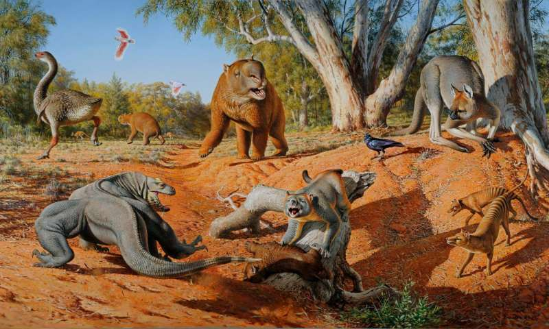 A menagerie of megafauna that inhabited Australia some 45,000 years ago. Credit: Peter Trusler, Monash University.