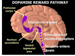 What you need to know about nicotine withdrawal and the