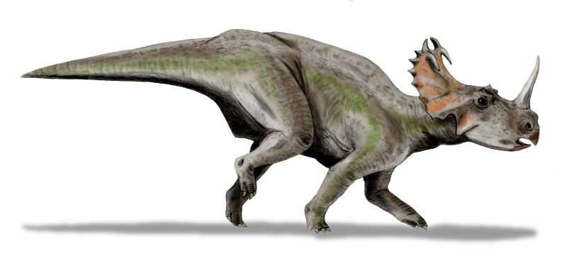 Artist illustration of Centrosaurus. Credit: Nobu Tamura.