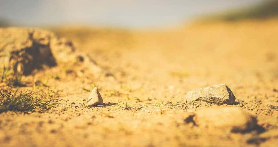 Arid ground.