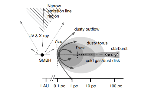 A schematic picture of the Active Galactic Nucleus (AGN) and the circumnuclear disc. (Wada, Kokubo, 2019)