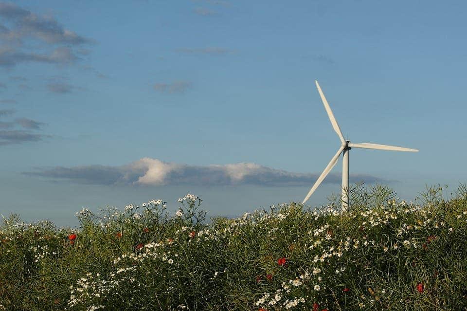 Dánsko vyprodukovalo takmer polovicu svojej energie vetrom