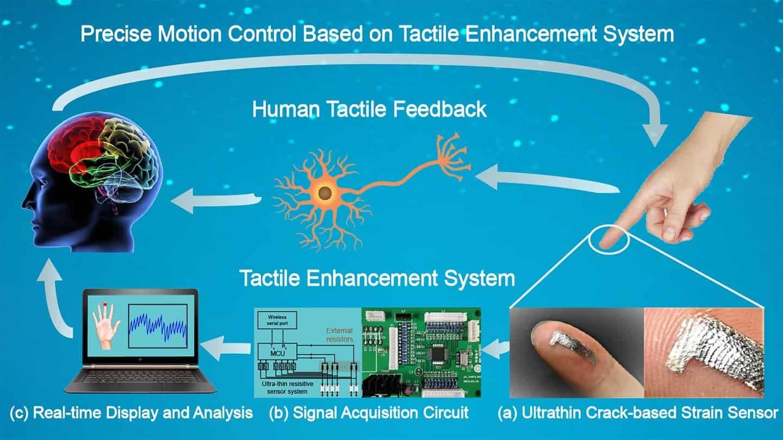 Spider-like ultra-sensitive sensor enhances human touch - ZME Science