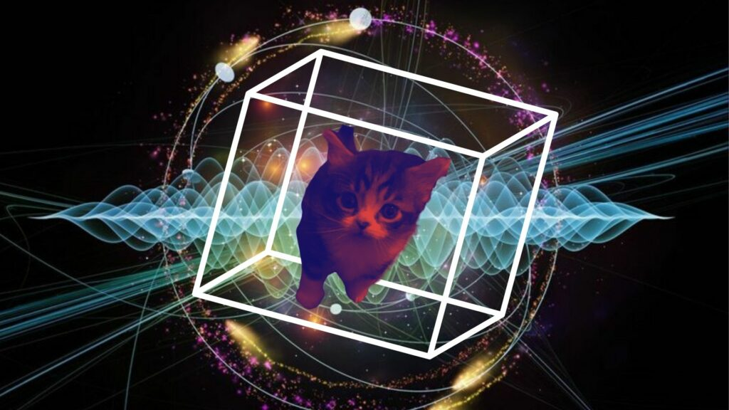 The tale of physics' most famous cat is one that is familiar to many, but what is the inside story of the feline so demanding it requires its own Universe, and how does it illustrate the 'weirdness' of the quantum world?