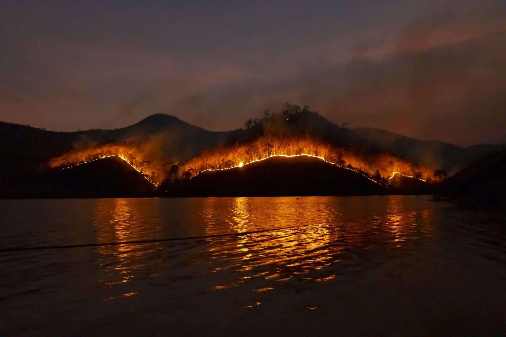 Калифорния и весь мир будут бороться с более продолжительными, более жаркими и сухими сезонами лесных пожаров thumbnail