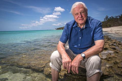 Photograph of Sir David Attenborough seated at the Great Barrier Reef, taken for his Great Barrier Reef series. Credit: 2015, Wikimedia Commons.